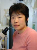Yu-Jing Sun, Ph.D.
