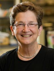 Anne B. Mason